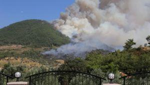 İzmir'de 167 orman yangını çıktı