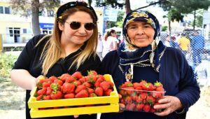 Çileği ile ünlü Emiralem'de festival coşkusu yaşandı