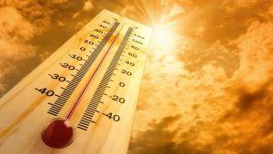 Yaz Sıcağı Kalbi Yoruyor