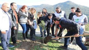 Gönüllüler Bayraklı'da çam fidanı dikti