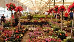 Sertel belediyeleri çiçekçilik sektörüne sahip çıkmaya çağırdı