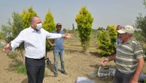 Başkan Utku Gümrükçü Çiftçiler Günü'nü Makamda Değil Tarlada Kutladı