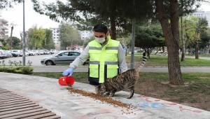 Bayraklı Belediyesi vatandaşı yalnız bırakmıyor