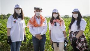 Başkan Soyer enginar hasadına katıldı