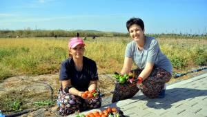 Kadınlardan Doğal Tarım Atağı
