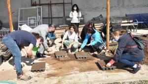 Gönüllüler yaz tohumlarını ekti