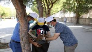 Dünya Çevre Günü'nde Bergama'da farkındalık etkinliği
